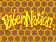 Бонусные раунды, фриспины и спецсимволы онлайн автомата Pollen Nation